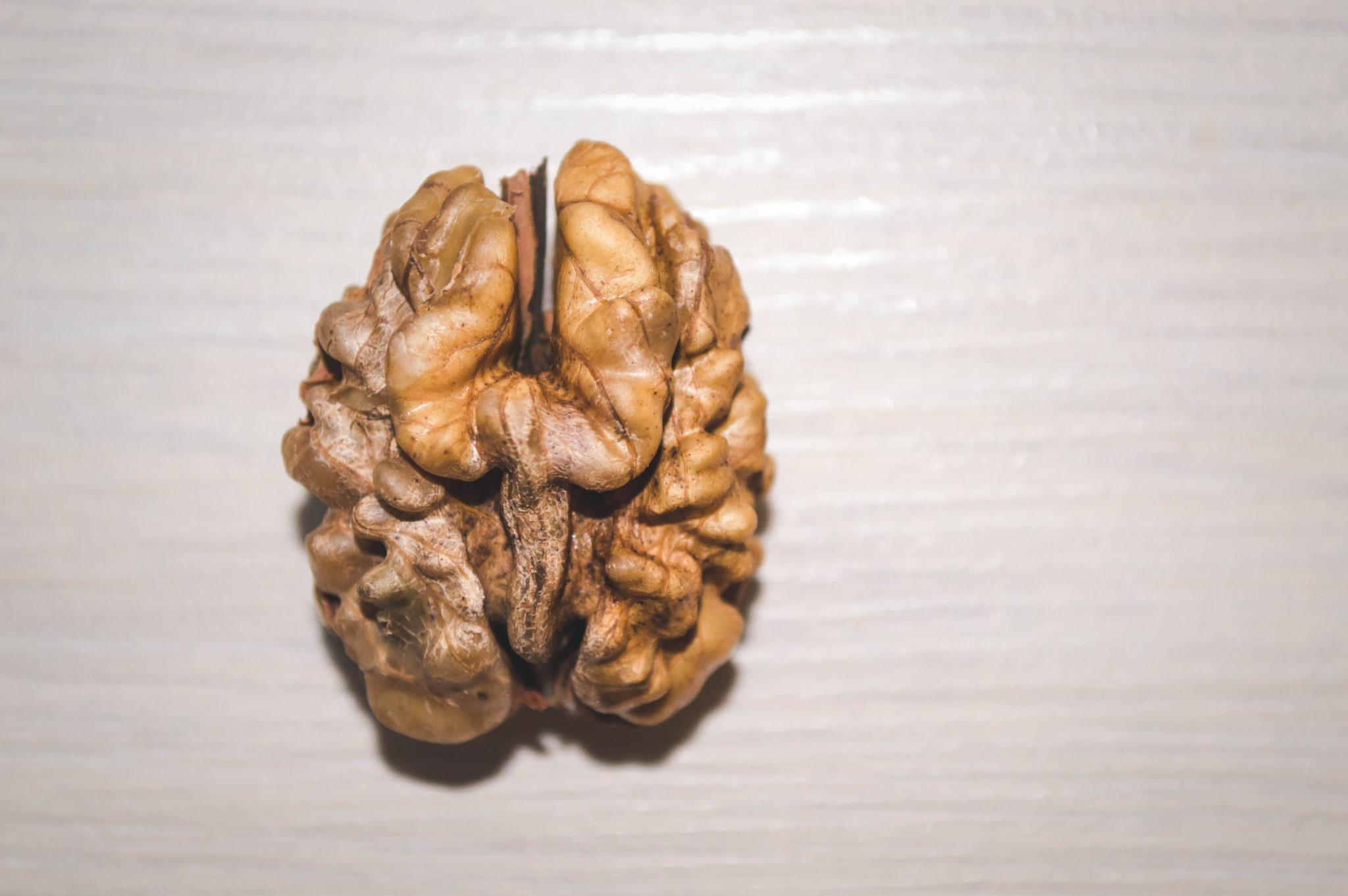 Image result for mental nutrition