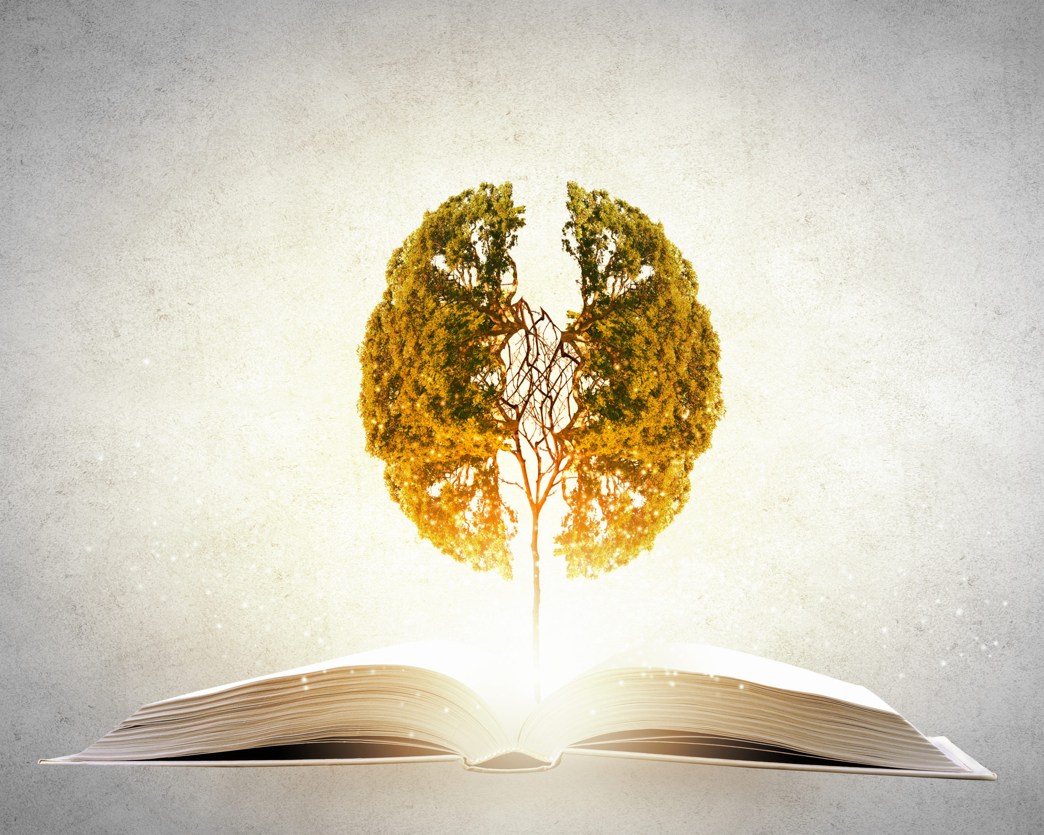 Why reading is essential to your brain health and personal growth