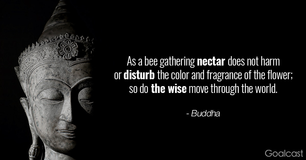 Zen quotes and proverbs - Buddha - so do the wise move through the world