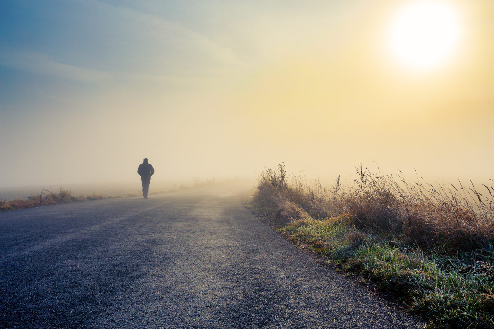 When You Lose, You Win: The Power of Perseverance and Pursuing Your Dreams