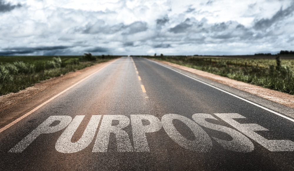 How to Hack Purpose
