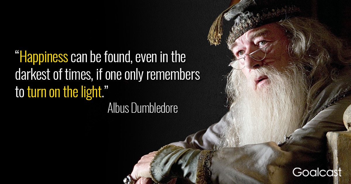 Image result for dumbledore darkness and light