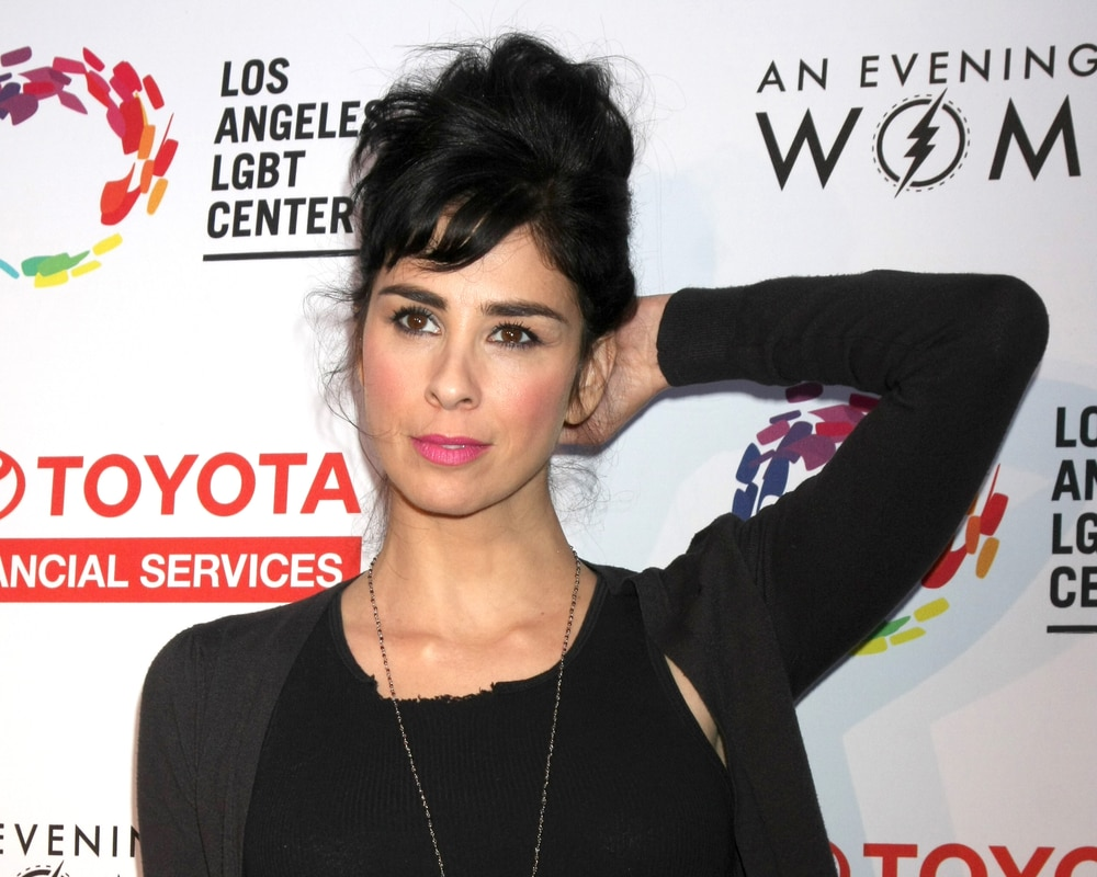 sarah-silvermans-perfect-response-to-twitter-troll
