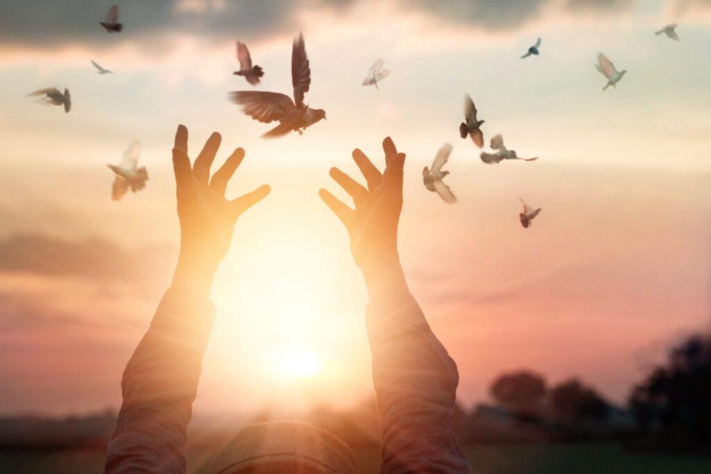 Hands-releasing-birds-forgiveness