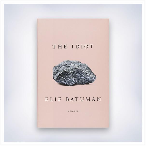the-idiot-book