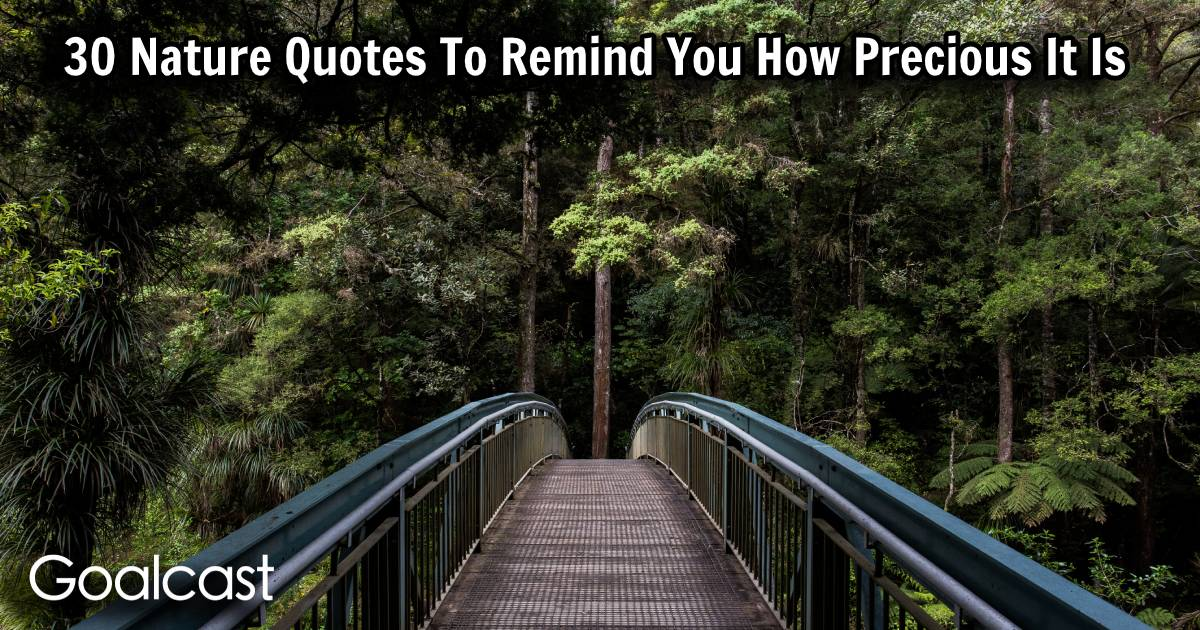 30 Nature Quotes To Remind You How Precious It Is Goalcast